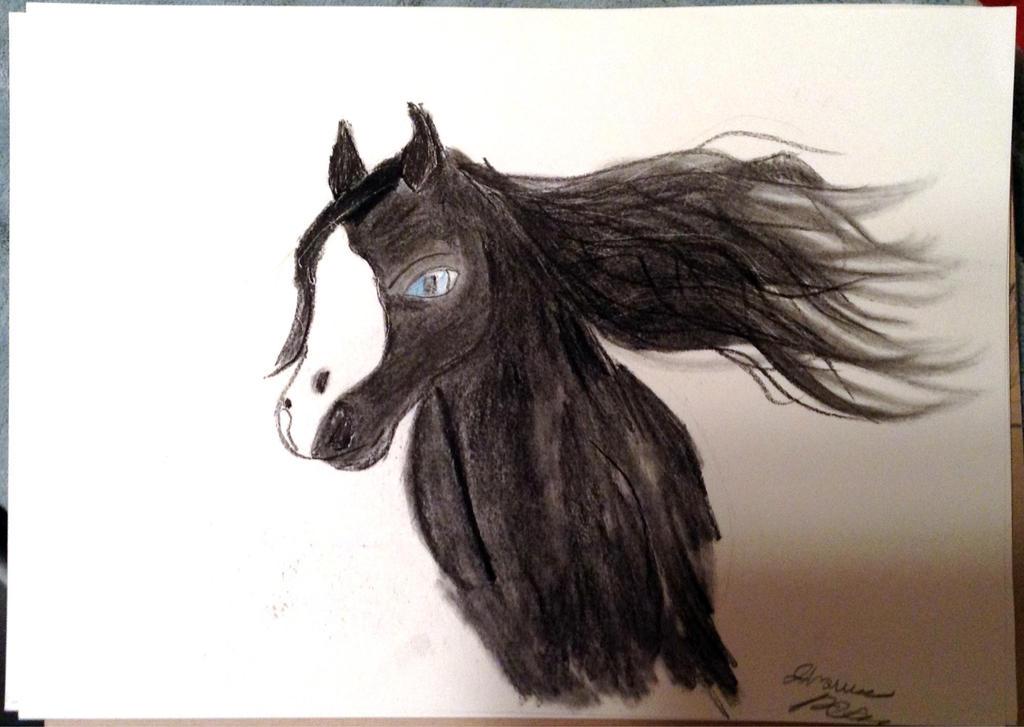 Equine Secret Santa - cyrillicconsortium by JeweledFaith