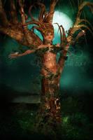 Tree Elemental II by ImaginedMoments