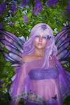 Butterfly Daze