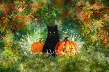 Samhain - Black Cat