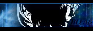 Bleach Signature Banner