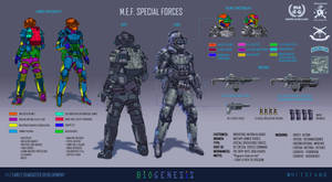 INA Military Expeditionary Forces Special Forces