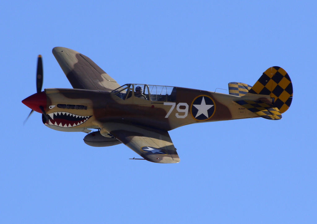Curtiss P-40N by shelbs2