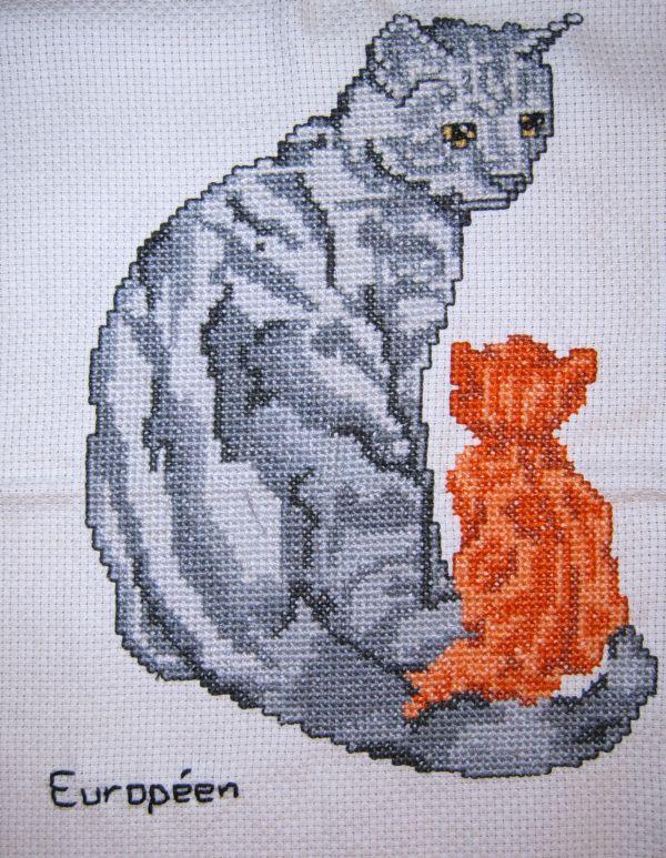 Cats by digikijo