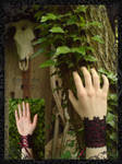 Secrets Of The Wood by ShizoidArt
