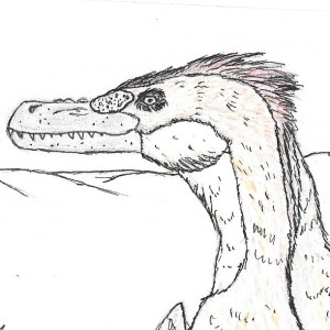 katanarama13's Profile Picture