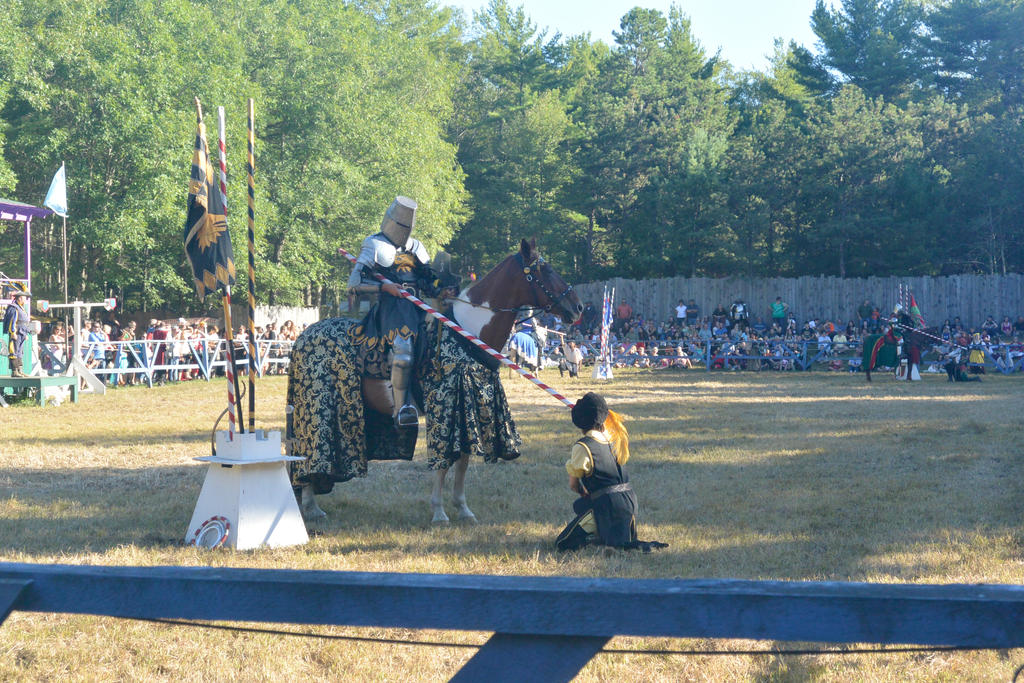 King Richard's Fair, the Knighting Ceremony by Miss-Tbones