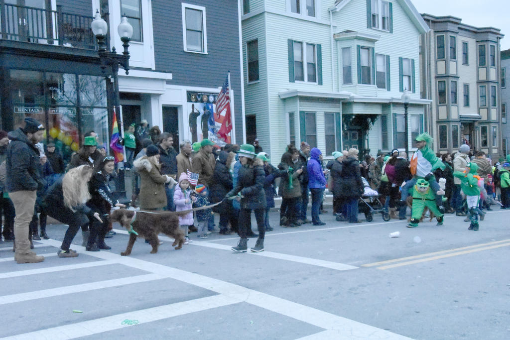 2017 St. Patrick's Day Parade, Irish Setters 5 by Miss ...