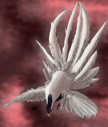 Silver Pheasant by sam241