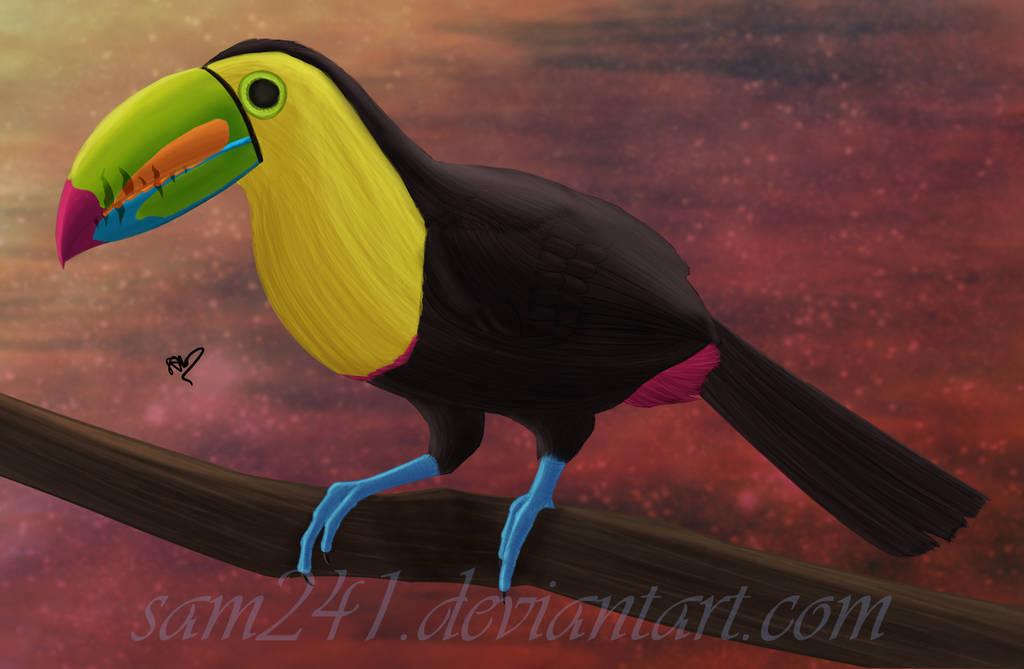 Keel Billed Toucan by sam241