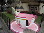 05 Daily Excalibur Mad Tea Cup