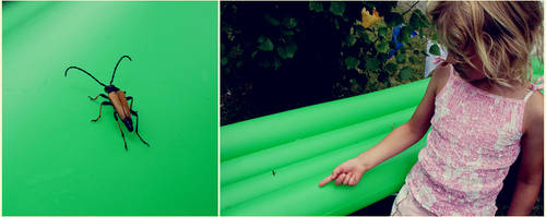 .green by youcantstealmylove