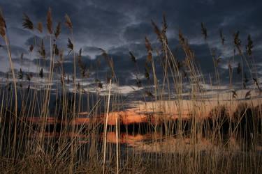 Pond at sunset by KajiyaEol