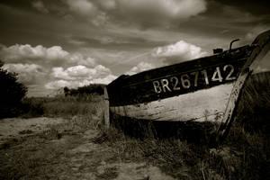 BR267142 by KajiyaEol