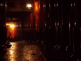 Rainy Torii tunnel by sirauo