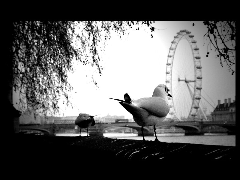 london by Nickyayumi