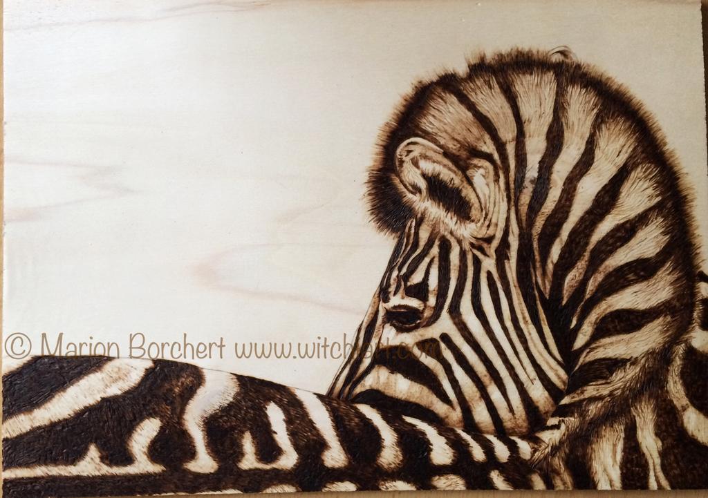 Woodburning zebra  by WitchiArt