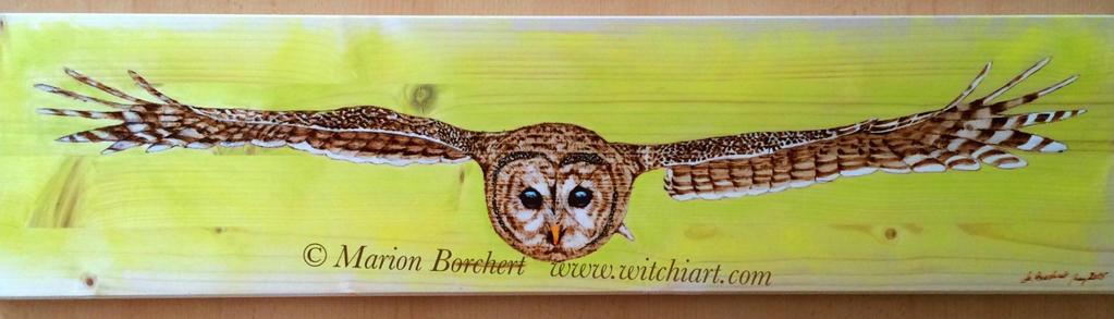 Owl by WitchiArt