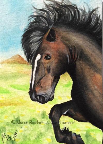 ATC #64 Islandic Horse by WitchiArt
