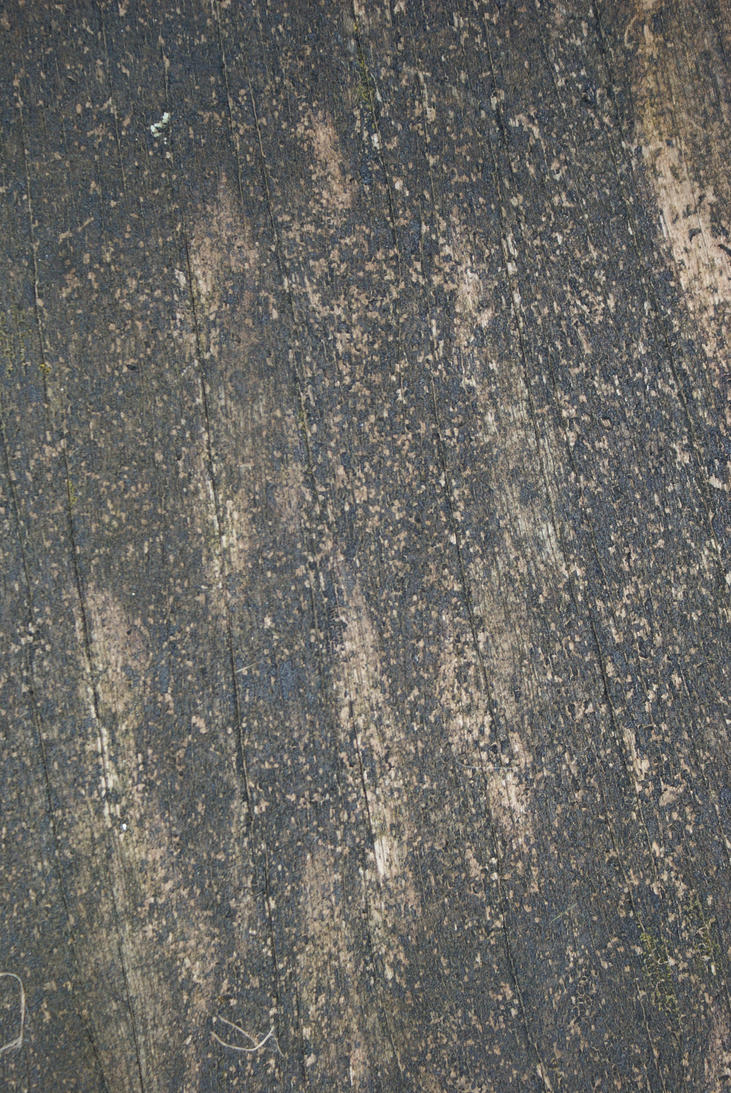 Texture by oosanders