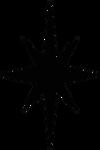 Necrozma Star Symbol