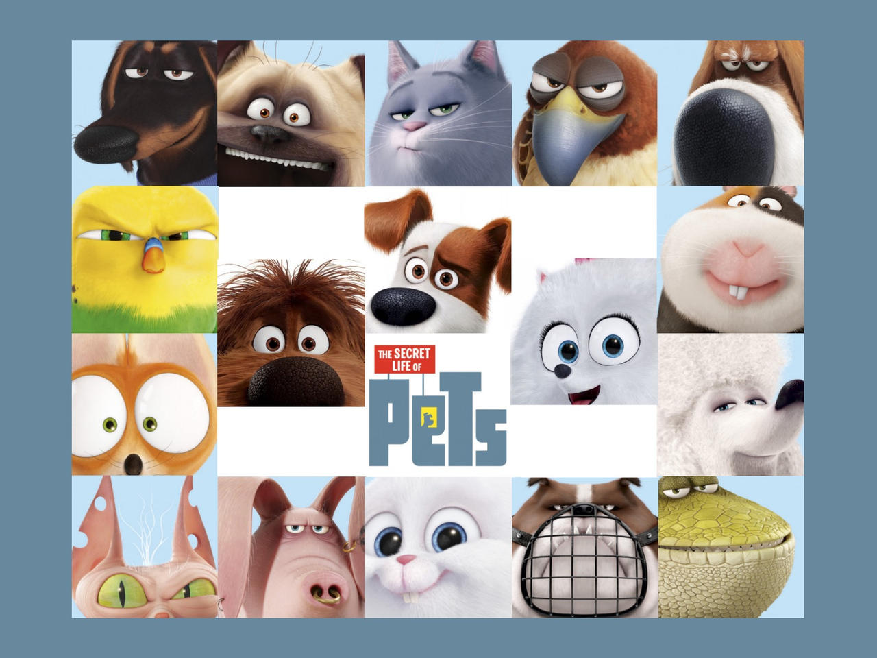 Secret Life Of Pets Wallpaper: The Secret Life Of Pets Wallpaper By Peachmog On DeviantArt