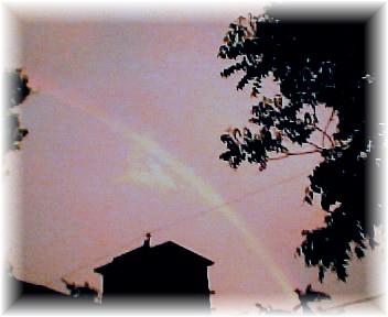 Rainbow by Nicollynne