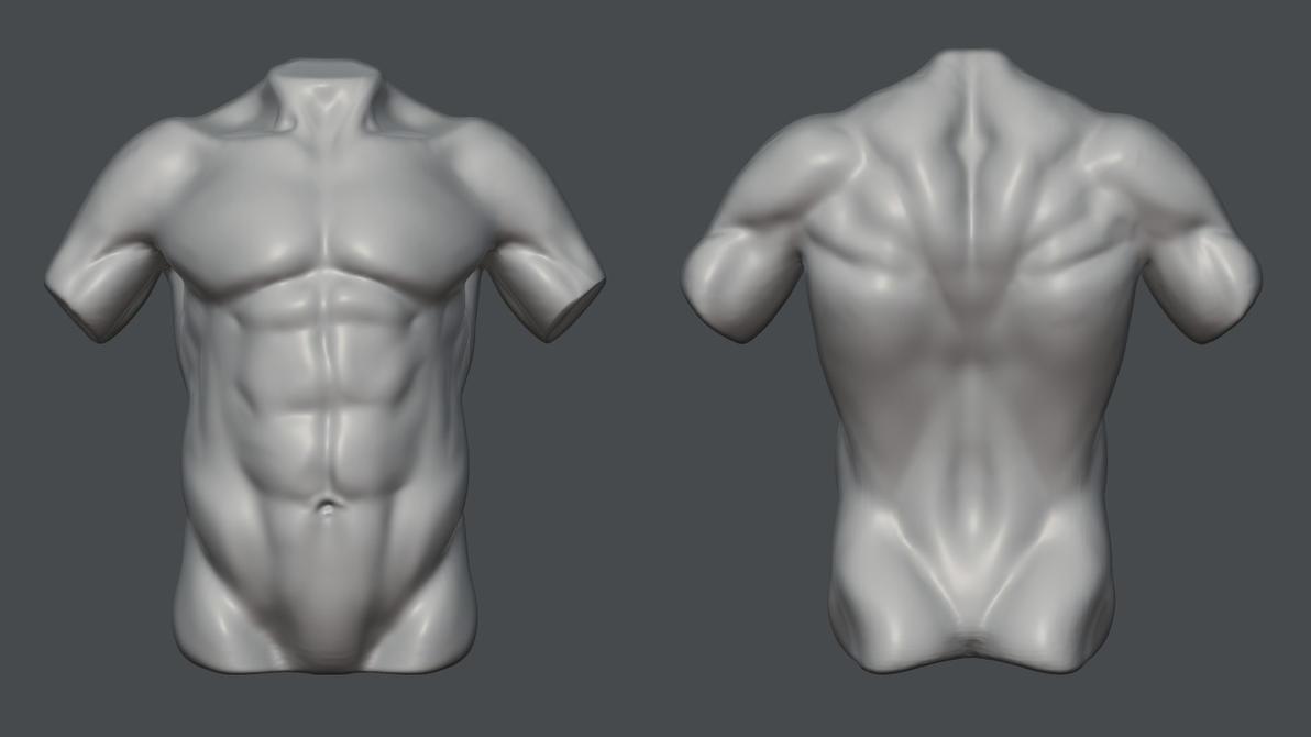 anatomy_practice___day_2_by_nitroxart-d6yruac.jpg