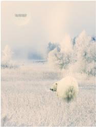 the breath of the ice bear