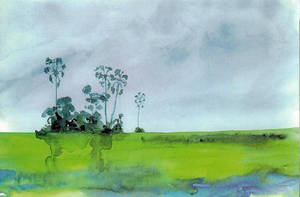 Okavango Watercolour