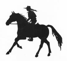 Silhouette of Girl Riding Horse