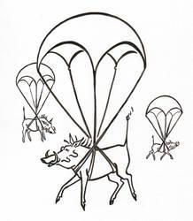 Warthog Parachuting