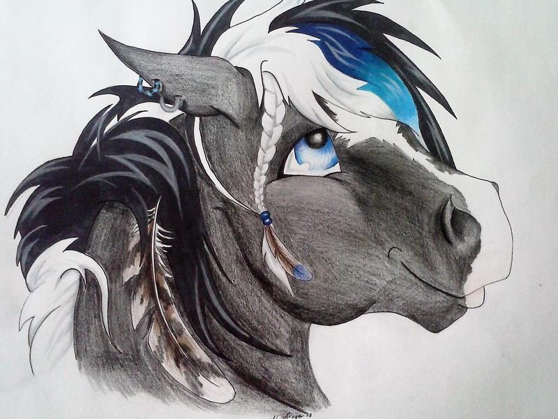 Furry Horse By Sisterarrow On DeviantArt