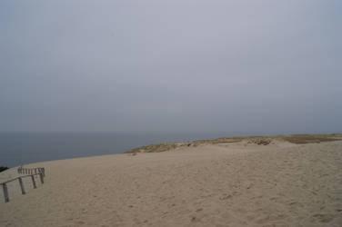 The Dune II