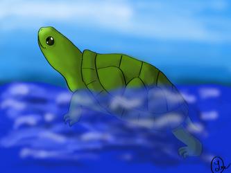Turtle for Gabe by Berrymarley