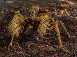 Mole Mantis by Alnomcys