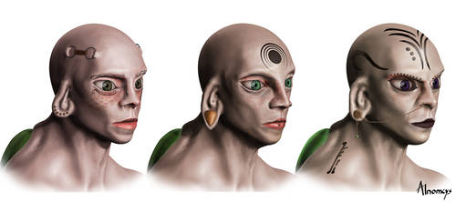hominus female heads by Alnomcys