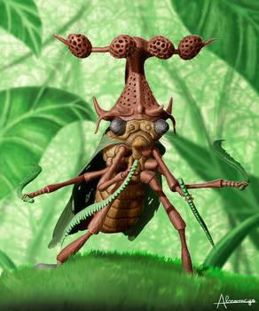 Membracidae warrior