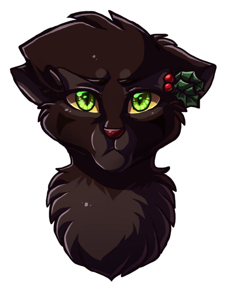 Hollyleaf by Klaracrystalpaws on DeviantArt