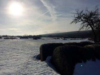 Winter Sky by mcorvec