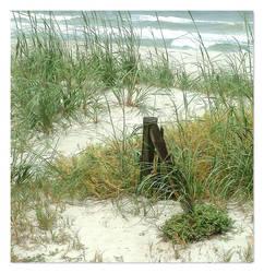 gigi's beach - pt 2