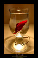 Red Fish II by YellowEleven