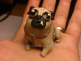 Perky Pug by Euphyley