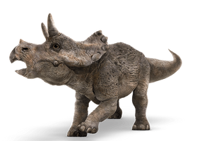 Jurassic World: Baby Triceratops by sonichedgehog2