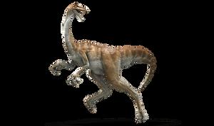 Jurassic World: Gallimimus by sonichedgehog2