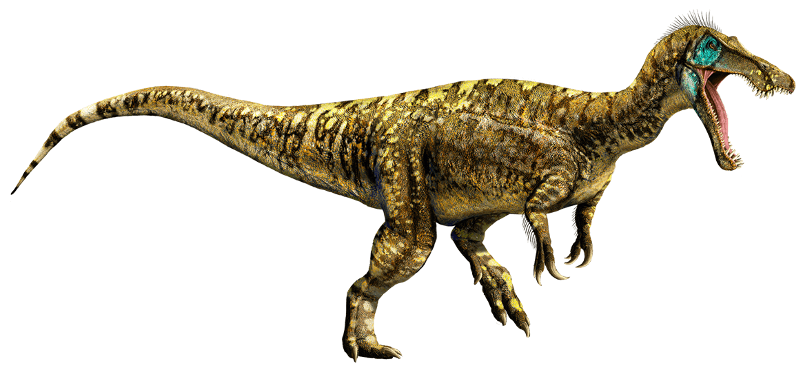 Dinosaurs Wallpapers  Full HD wallpaper search
