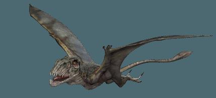 Jurassic World: Dimorphodon by sonichedgehog2