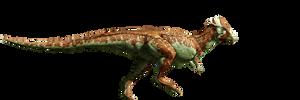Jurassic World: Pachycephalosaurus