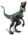 Jurassic World Fallen Kingdom: Velociraptor Blue