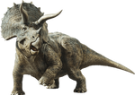 Jurassic World Fallen Kingdom: Triceratops
